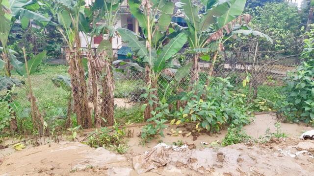Dự án xả bùn tràn lênh láng khắp khu dân cư - 2