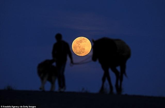 Kỳ thú hiện tượng siêu trăng trên khắp các điểm đến nổi tiếng thế giới - 11