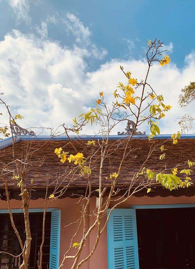 Bất ngờ với căn nhà cổ trăm tuổi đẹp hiếm có của cặp vợ chồng người Huế - 1
