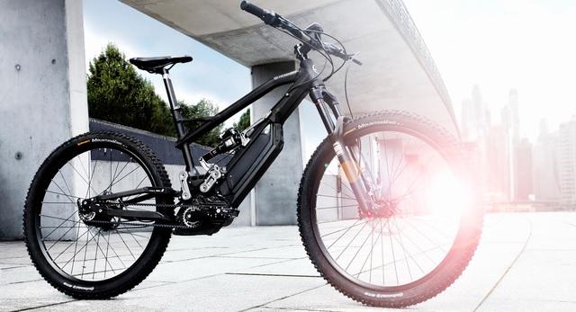 Pháp phạt tù người độ xe đạp điện lên trên 25 km/h - 1
