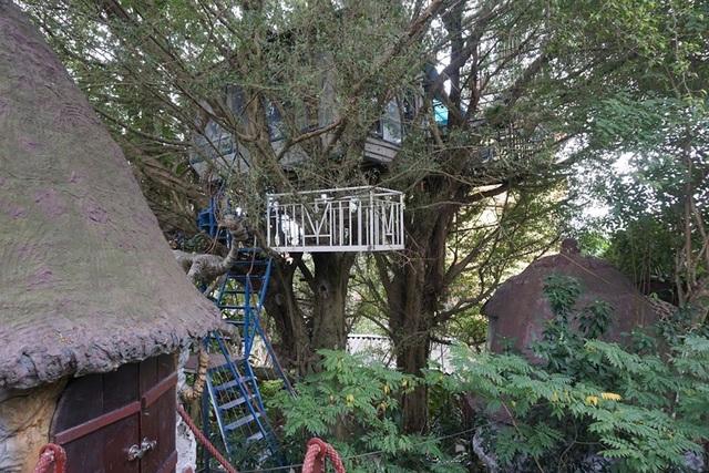 Kỳ lạ quần thể nhà xây dựng trên cây cổ thụ trăm tuổi độc nhất Hà Nội - 10