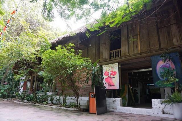 Kỳ lạ quần thể nhà xây dựng trên cây cổ thụ trăm tuổi độc nhất Hà Nội - 3