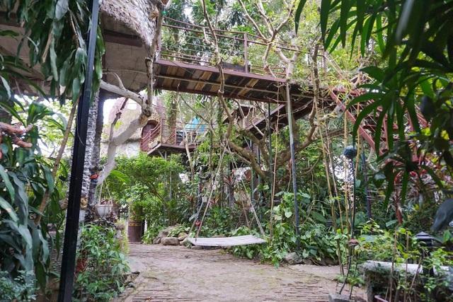Kỳ lạ quần thể nhà xây dựng trên cây cổ thụ trăm tuổi độc nhất Hà Nội - 4