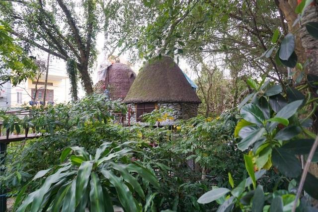 Kỳ lạ quần thể nhà xây dựng trên cây cổ thụ trăm tuổi độc nhất Hà Nội - 5