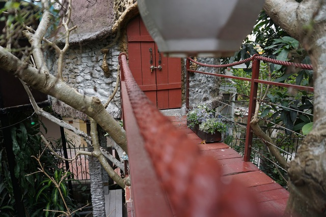 Kỳ lạ quần thể nhà xây dựng trên cây cổ thụ trăm tuổi độc nhất Hà Nội - 9
