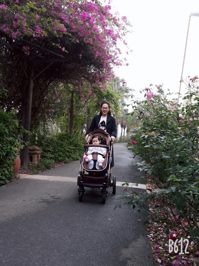 Đại tràng Ngọc Linh - Sự lựa chọn an toàn cho mẹ sau sinh - 1