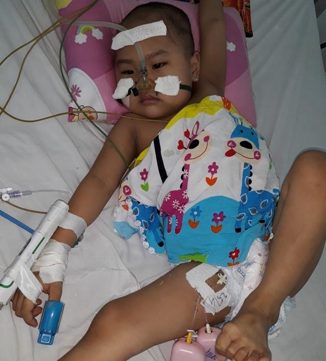 Người mẹ cầu xin mọi người cứu con gái nhỏ ung thư máu mơ làm bác sĩ - 6