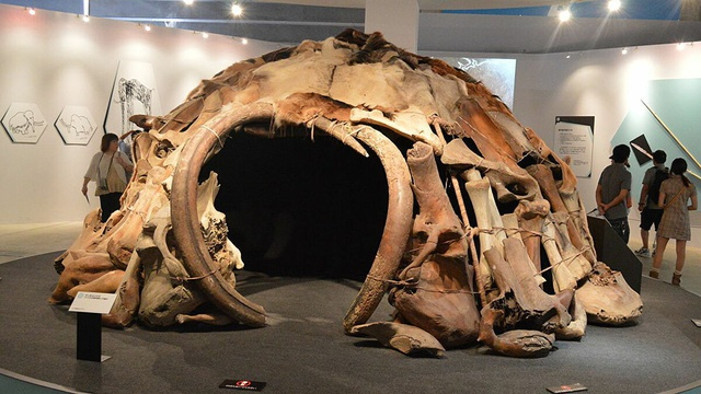 Bí ẩn vòng tròn xương voi ma mút mới được phát hiện ở Nga - 2