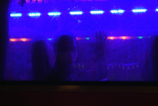 Chuyến xe chở công dân về khu cách ly Pháp Vân - Tứ Hiệp trong đêm mưa - 2