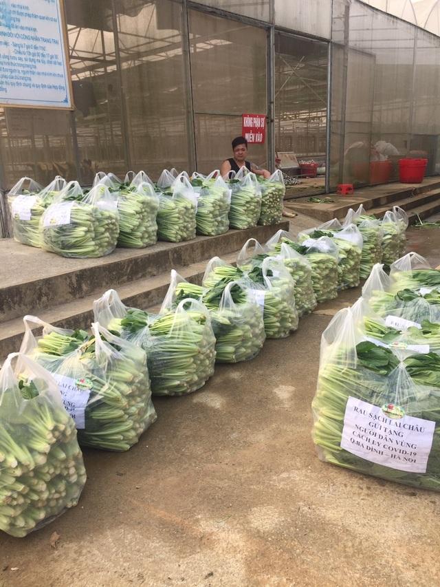 """Chủ vườn ở Lai Châu """"hái"""" 2 tấn rau ủng hộ người cách ly ở Hà Nội - 5"""