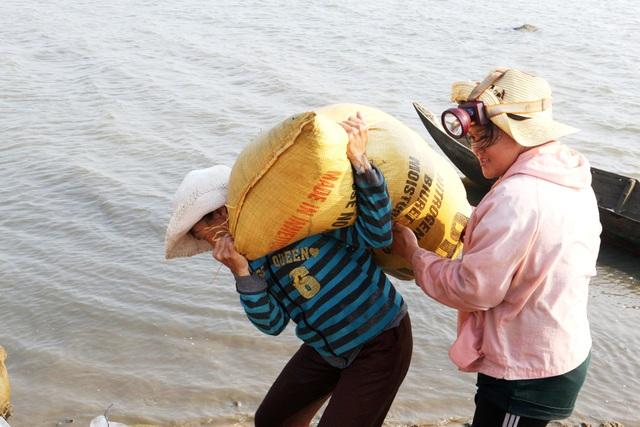 Ngư dân Quảng Nam được mùa rong câu - 8