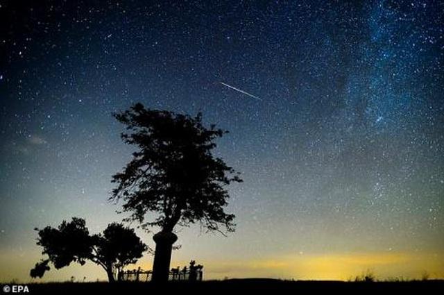 Atlas- sao chổi mới được phát hiện có thể tỏa sáng rực rỡ như mặt trăng - 2