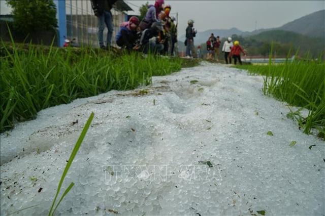 Mưa đá mật độ dày đặc tại Điện Biên - 2