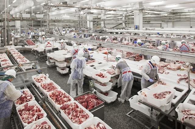 Thịt lợn Nga ồ ạt về Việt Nam, ép giá hàng trong nước - 1
