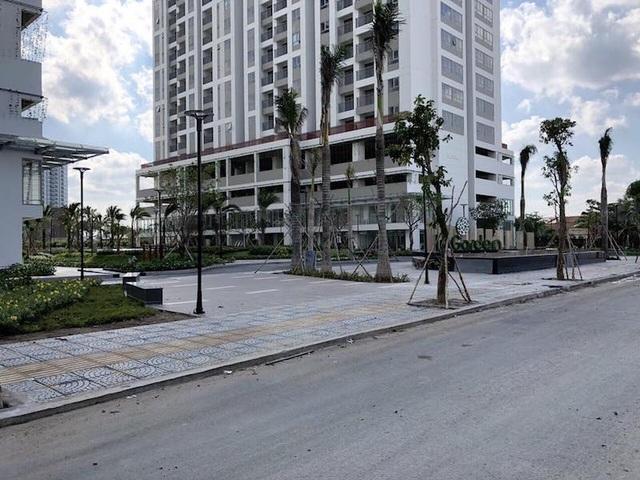 TPHCM tiến hành đánh giá tiến độ của nhiều dự án bất động sản - 1