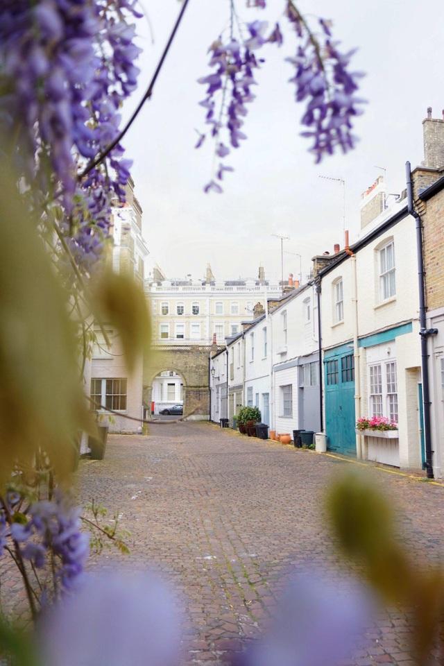 Những biệt thự phủ kín sắc tím hoa tử đằng đẹp như cổ tích ở Anh - 4