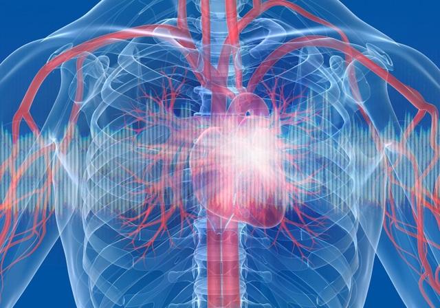 COVID-19 có thể gây ra chấn thương tim - 1