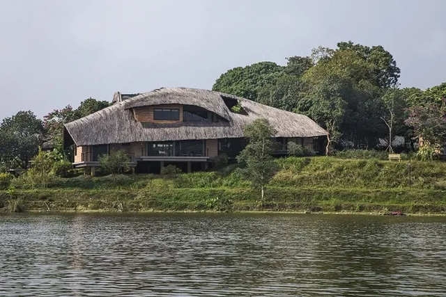 Ngôi nhà mái rạ của đại gia Hà Nội gây sốt trên báo Mỹ vì thiết kế độc lạ - 1