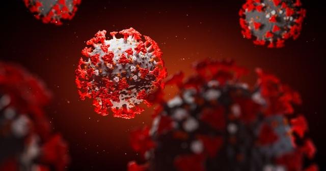 Virus corona tiếp tục đột biến, hiện đã có 8 biến thể - 1