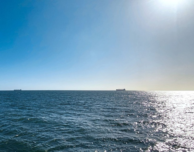 Du khách mắc kẹt trên biển gần 1 tháng vì đại dịch Covid-19 - 2