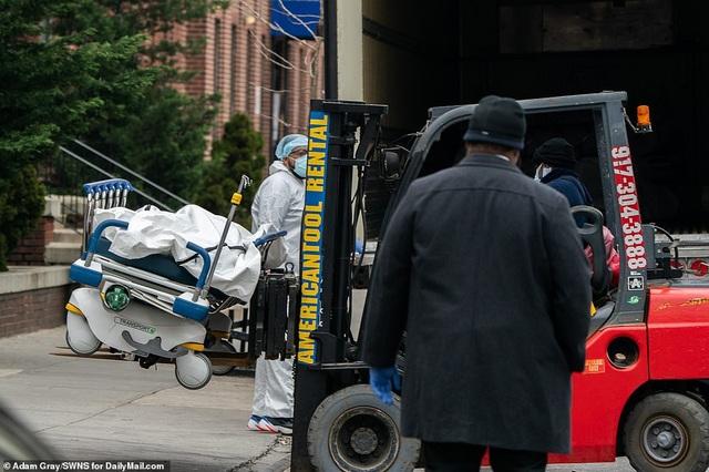 New York dùng bìa cứng che thi thể đưa lên xe đông lạnh - 12