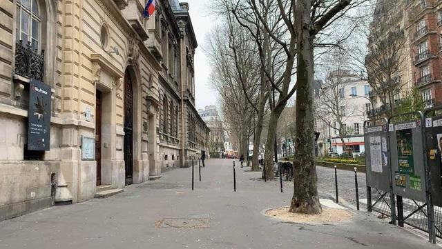 Nhật ký của BTV Mỹ Linh trong những ngày Pháp bị phong toả vì Covid-19 - 7