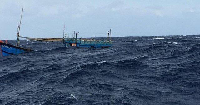 Khẩn cấp xác minh thông tin 8 ngư dân mất tích cùng tàu cá - 1