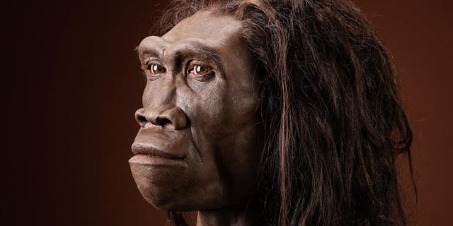 Phát hiện hóa thạch lâu đời nhất liên quan đến loài người - 1