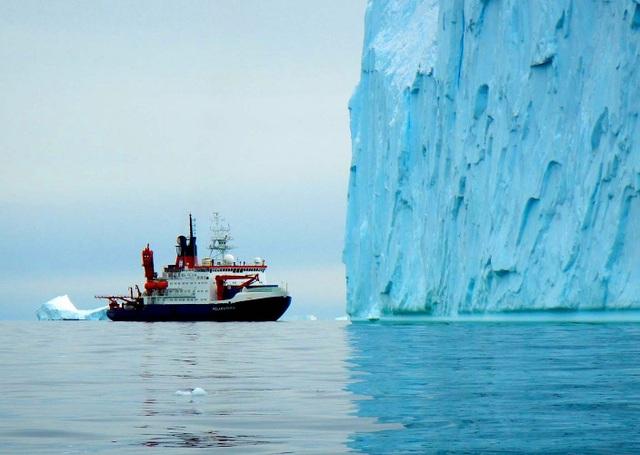 90 triệu năm trước, phía Tây Nam Cực là một rừng mưa rộng lớn - 2