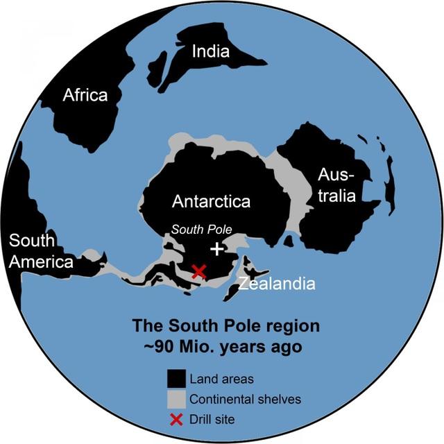 90 triệu năm trước, phía Tây Nam Cực chính là một rừng mưa rộng lớn - 3