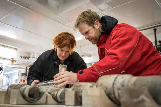 90 triệu năm trước, phía Tây Nam Cực là một rừng mưa rộng lớn - 5