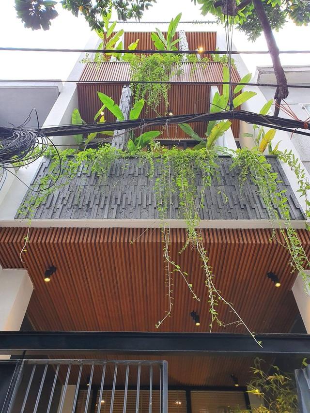 Biến ngôi nhà nhỏ ở Đà Nẵng trở thành khu vườn tràn ngập cây cối - 1
