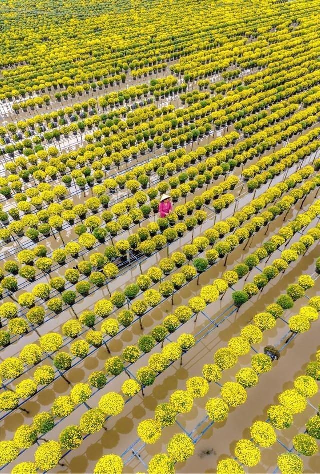 Ảnh đẹp về chủ đề nước ở Việt Nam - 7
