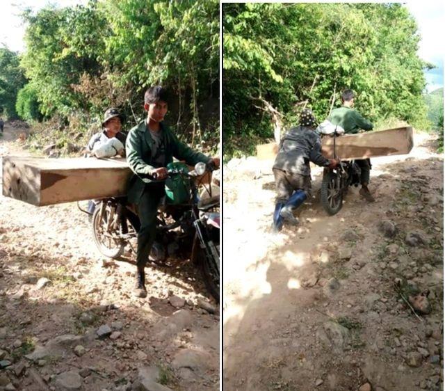 Hàng nghìn hecta rừng tại Gia Lai tan biến do đâu? - 2