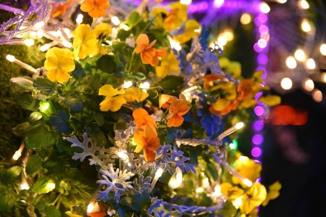 Đến nơi bốn mùa đều ngát hương hoa - 10