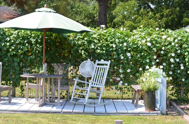 Khó rời mắt với các ý tưởng thiết kế sân vườn đẹp như resort - 7