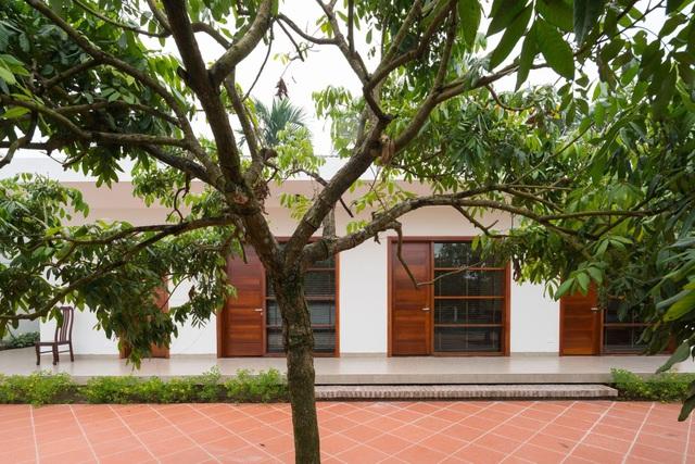 Cận cảnh nhà vườn hiện đại lọt thỏm giữa vườn nhãn trăm tuổi ở Hưng Yên - 7