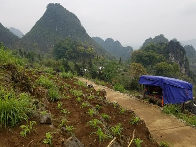 Độc đáo phòng học online bên sườn núi của Lầu Mí Xá - 5