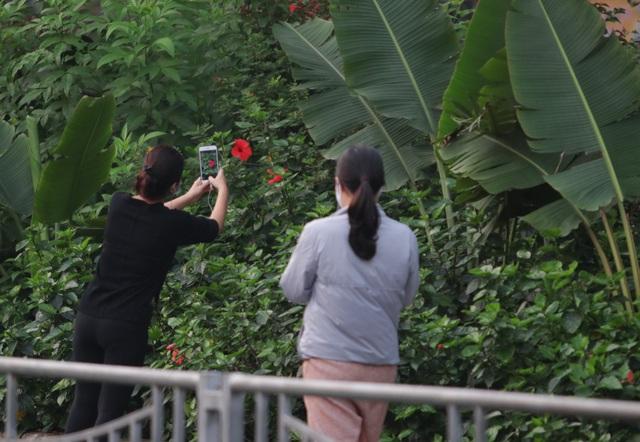 Nhộn nhịp tập thể dục trên con đường đi bộ dài nhất Hà Nội - 11