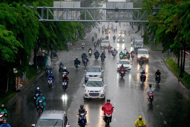 Sài Gòn đón mưa vàng.jpg