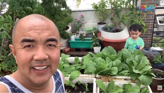 NSND Hồng Vân, Quốc Thuận khoe vườn nhà xum xuê cây trái để tránh dịch - 7