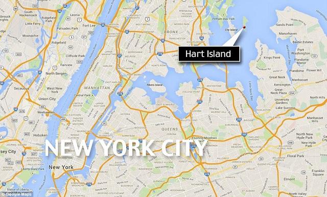 Đảo ở New York biến thành nghĩa trang tập thể giữa dịch Covid-19 - 6