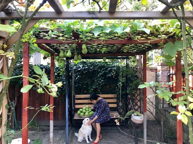 Ngôi nhà phủ kín hoa hồng đẹp không rời mắt của nữ Việt kiều ở Hungary - 9