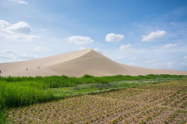 Bên trong ốc đảo 2.000 năm tuổi giữa sa mạc ở Trung Quốc - 11