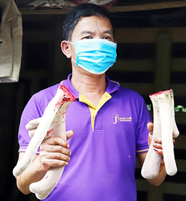 Thủ phủ nuôi hươu trầm lắng, giảm thu do ảnh hưởng dịch Covid-19 - 4