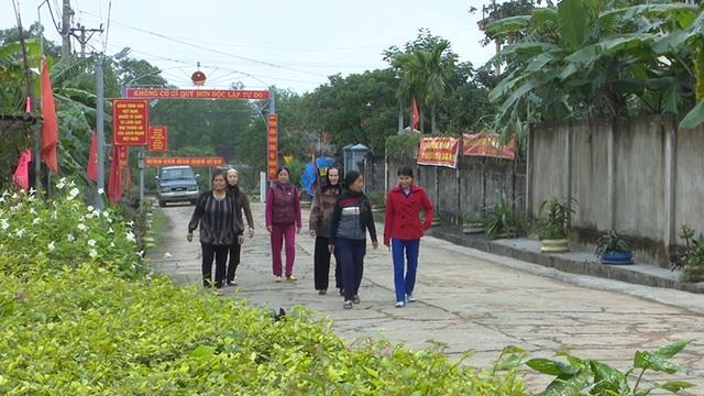 Thủ tướng công nhận huyện Nông thôn mới đầu tiên tại Quảng Trị - 2