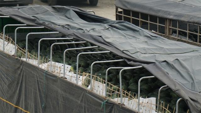 Hàng nghìn xe nông sản ùn ứ ở cửa khẩu Lạng Sơn - 4