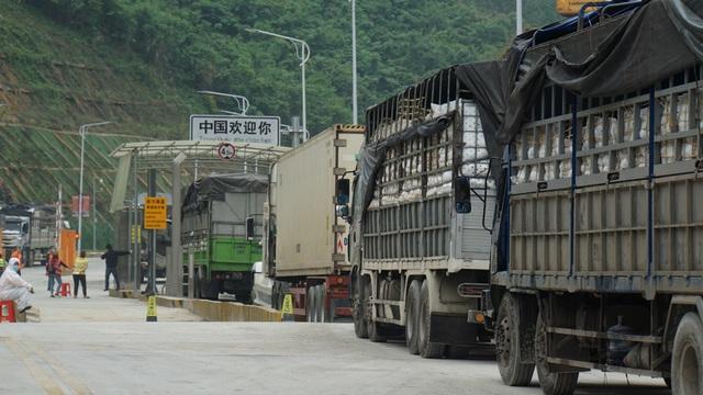 Hàng nghìn xe nông sản ùn ứ ở cửa khẩu Lạng Sơn - 10