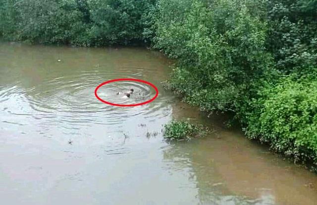 Người đi đường lao xuống sông sâu cứu nữ sinh nhảy cầu - 1