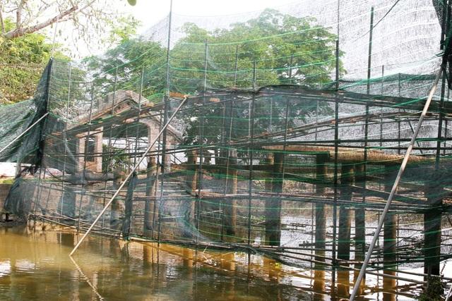 Hạ giải cây cầu ngói độc đáo ở Việt Nam - 19
